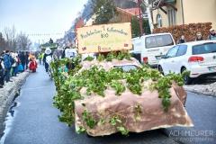 Schifferfastnacht-Postelwitz-Bad-Schandau-Saechsische-Schweiz-Sachsen_0028
