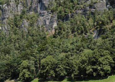 Elbsandstein, Sächsische Schweiz, Bootsfahrten auf der Elbe, Basteimassiv,