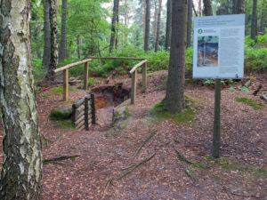Bodenlehrpfad bei Gohrisch - Foto Tatjana Bräutigam LfULG, Umwelt, Boden