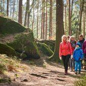Winterwandern im Elbsandsteingebirge: Entschleunigung pur!