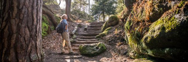 Malerweg: Ein Teil der Etappe 7 mit Pfaffenstein