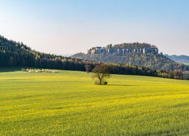Festung Königstein ©Achim Meurer