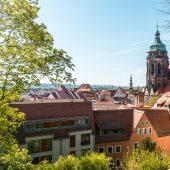 15 Argumente warum Pirna, ein idealer Urlaubsort ist