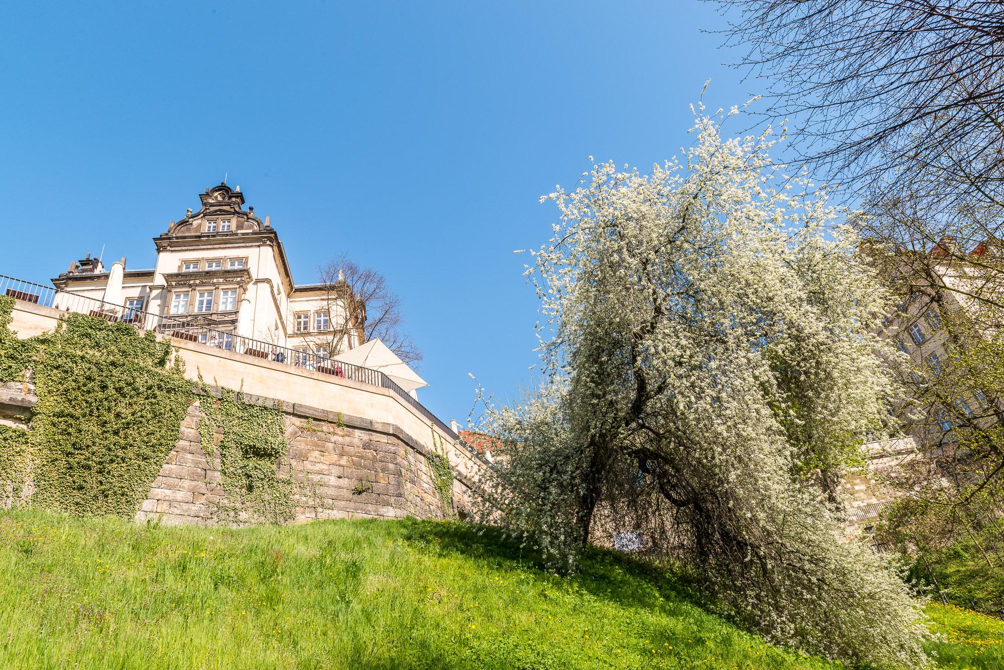 Schloss Pirna ©Achim Meurer