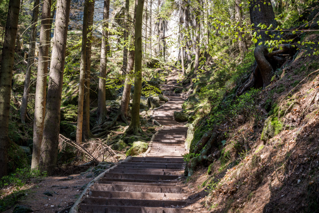 Schwedenlöcher Treppenaufstieg Holz ©Achim Meurer