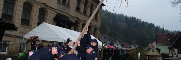 Die Tradition des Maibaums in der Sächsischen Schweiz