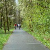 Mit dem E-Bike von Pirna nach Stolpen