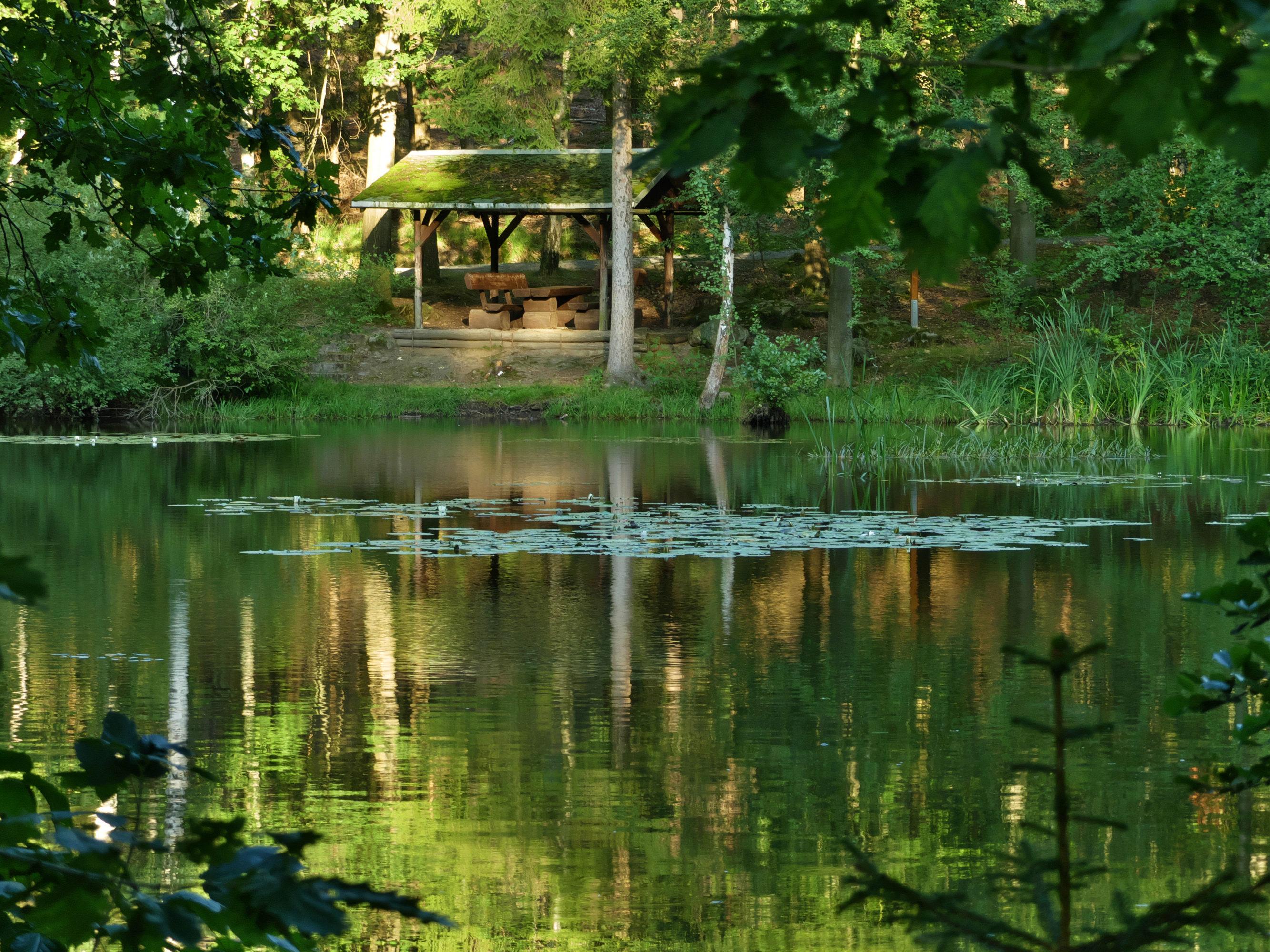 Großer Teich in Rosenthal