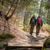 Wandern ist gesünder als man denkt!