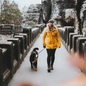 Wandern mit Hund - Raus in die Natur