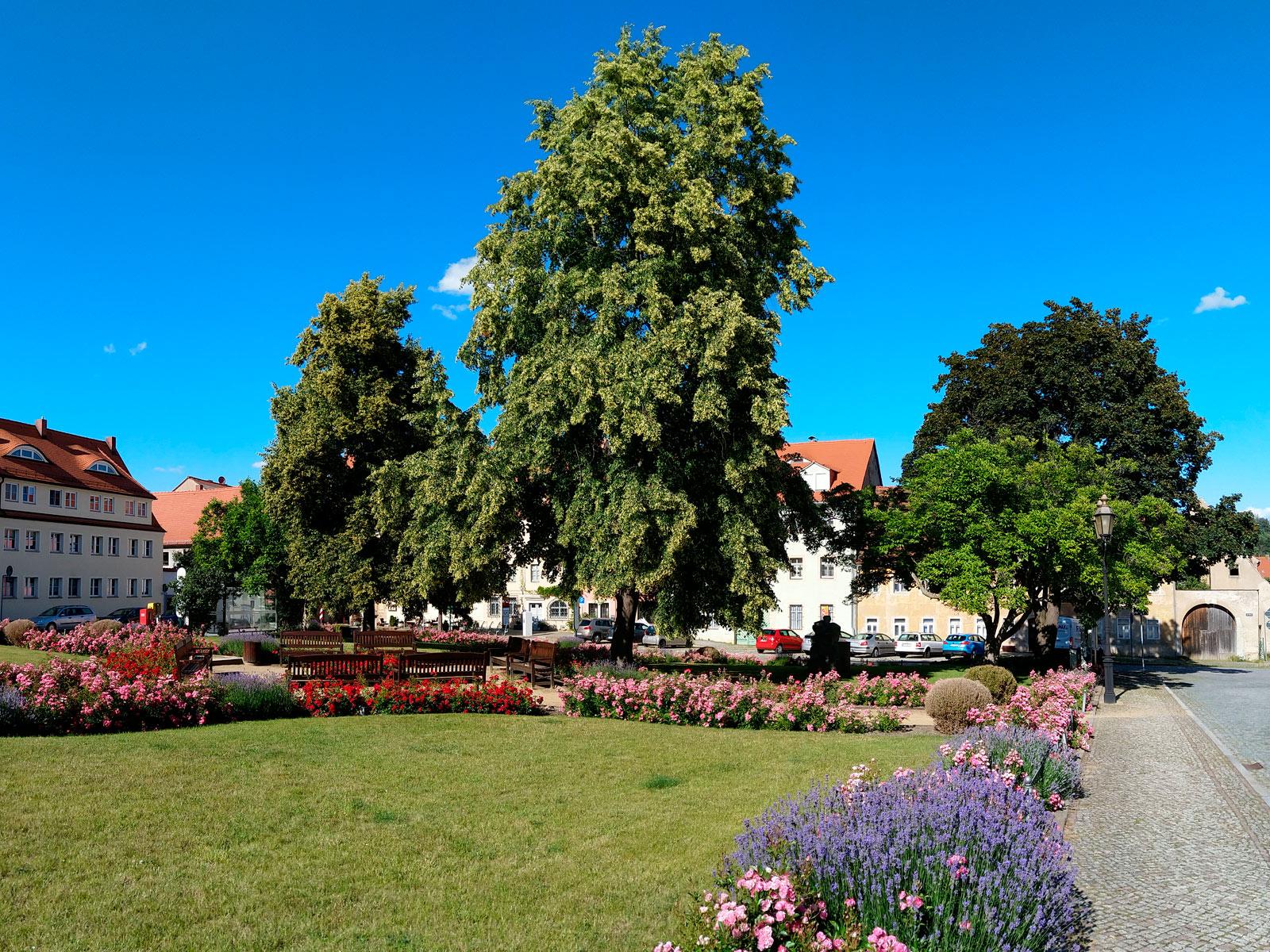 Marktplatz Dohna