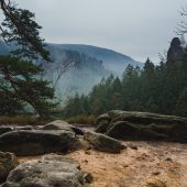 Allein im Wald Winterwanderung Schmilkaer Kessel