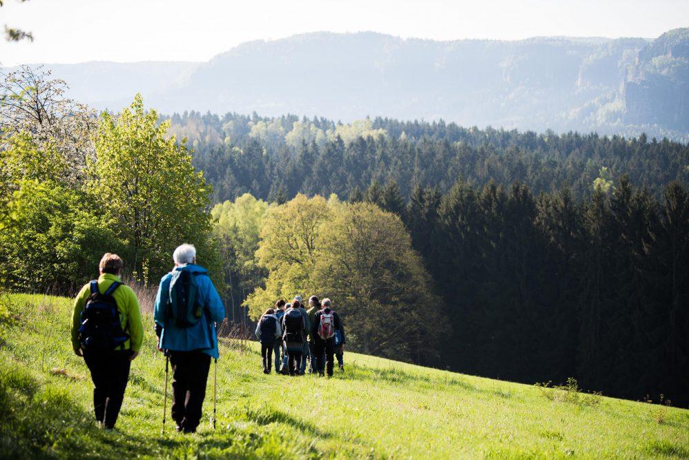 Vogelstimmenwanderung um den Panoramaweg (c) ThielPR, Sebastian Thiel