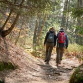 Unterwegs im Elbsandsteingebirge - 5 Tipps für deine ideale Wanderausrüstung