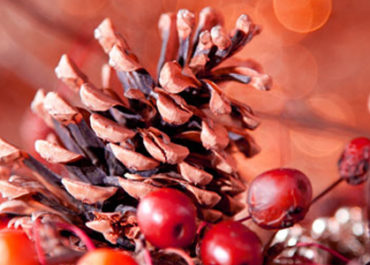 weihnachtsgeschenke Tipp (c) karepa Fotolia