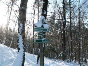 Wanderweg von Krippen zur Kleinen Bastei